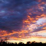 3-17-19 Sunsets HWL (2)